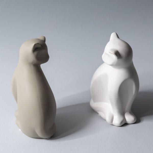 Ray Cat 1 0429