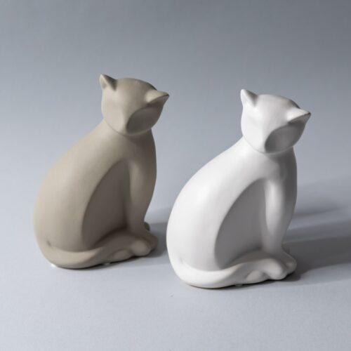 Ray Cat 2 0431