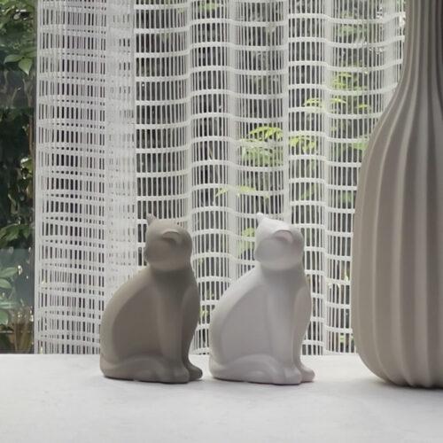 Ray Cat IMG 5019