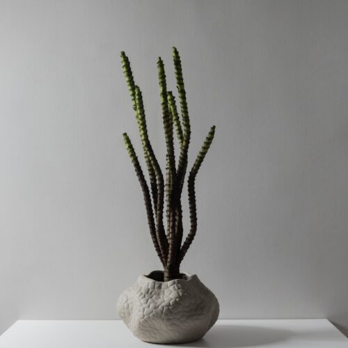 Trisha Vase FW14 0697
