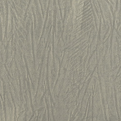 Syamese - Light grey