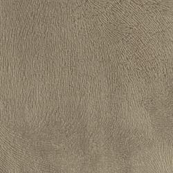 Velvety Spur - Brown