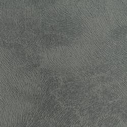 Velvety Spur - Dark Grey
